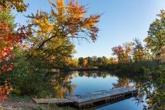 Autunno in Ontario Fotografia Stock