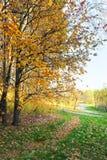 Autunno Parco di Tsaritsyno a Mosca Fotografia Stock