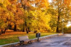 Autunno a Praga, parco turistico favorito Letenske sady, repubblica Ceca di Letna della destinazione fotografia stock