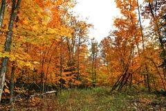 Autunno in Quebec, Canada, America settentrionale fotografia stock libera da diritti