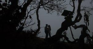 Autunno scuro, paesaggio della montagna L'uomo abbraccia la condizione della donna prima degli alberi con le foglie cadute copert archivi video