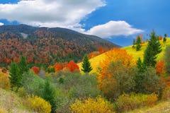 Autunno soleggiato luminoso nelle montagne fotografie stock libere da diritti
