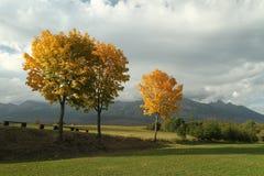 Autunno sotto alto Tatras immagini stock libere da diritti