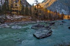 Autunno sui fiumi della montagna Altai Immagine Stock