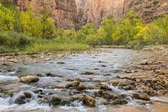 Autunno sul fiume vergine Fotografie Stock Libere da Diritti