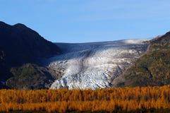 Autunno sul ghiacciaio Seward Alaska dell'uscita fotografia stock libera da diritti