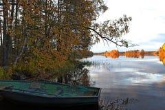Autunno sul lago della foresta Immagine Stock