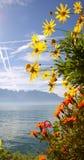 Autunno sul lago Ginevra - Svizzera Immagini Stock Libere da Diritti