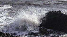 Autunno sulla costa Fotografie Stock Libere da Diritti