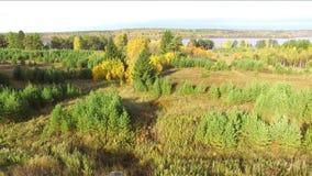 Autunno sulla vista superiore del lago dal quadcopter stock footage