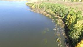 Autunno sulla vista superiore del lago dal quadcopter archivi video