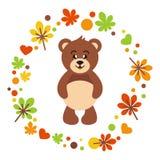 Autunno sveglio dell'orso Fotografia Stock
