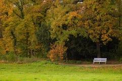 Autunno in un parco Fotografia Stock Libera da Diritti