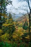 Autunno in valle boscosa in montagne dell'Alsazia Fotografia Stock