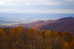 Autunno - valle di Shenandoah Fotografie Stock Libere da Diritti
