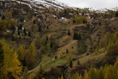 Autunno variopinto nelle alpi della dolomia dei montains Fotografia Stock Libera da Diritti