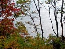 Autunno Vista della baia dall'alta riva immagine stock libera da diritti