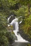 Auvergne waterfall Stock Photography