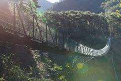 Auwanta drawbridge. Leading to the coniferous forest Royalty Free Stock Photos