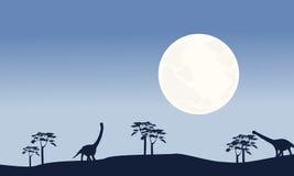 Aux silhouettes de paysage d'argentinosaurus de nuit Photo stock