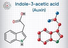 Auxin Indole-3-acetic syrlig IAA, 3-IAA Ark av papper i en bur Strukturell kemisk formel- och molekylmodell vektor illustrationer