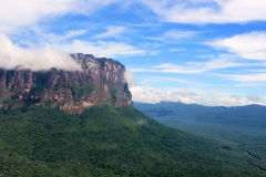 Auyantepui from the plane Stock Image