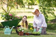 Avó feliz com sua jardinagem da neta Fotos de Stock Royalty Free