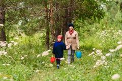 Avó nova e menino caucasianos que andam nas madeiras no verão a avó guarda a mão do neto imagens de stock