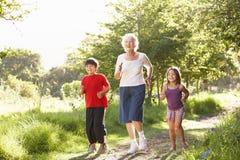 Avó que movimenta-se no parque com netos Foto de Stock Royalty Free