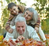 Avós e neto Fotografia de Stock