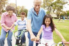 Avós que ensinam netos montar bicicletas no parque Imagem de Stock