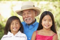 Avô com os netos no jardim foto de stock