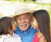 Avô com os netos no jardim fotografia de stock