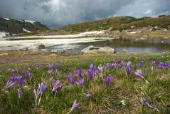 1 av de 7 Rila sjöarna 3 Arkivfoto
