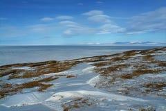 Is av det arktiska havet av kusten av Chukotka fotografering för bildbyråer