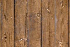 Av det gamla staketet med vertikala bräden, ljus-brunt bleknade färg, fnuren på sörjer bräden arkivfoto