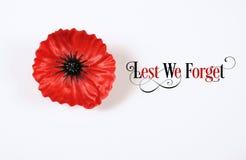 Av fruktan att vi glömmer, röda Flanders Poppy Lapel Pin Badge på vit Royaltyfria Foton