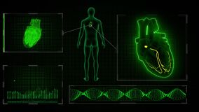 AV Node signal in the Heart with Human Body