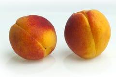 av nya aprikors Royaltyfri Bild