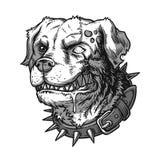 Av ondo tokig hund för vektorillustration Arkivbilder