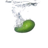 avacado飞溅 免版税库存图片