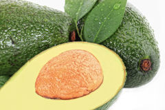 Avacado Royalty Free Stock Photography