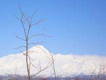 Avacha火山 图库摄影