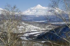 Avacha volcano of Kamchatka Peninsula. stock photos
