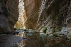 Avakas canyon in Akamas park Stock Photography