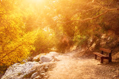 The Avakas canyon Royalty Free Stock Images