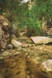 The Avakas canyon Stock Photography