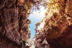 Avakas klyfta Paphos område, Cypern Royaltyfri Fotografi