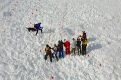 Avalanch sökande Fotografering för Bildbyråer