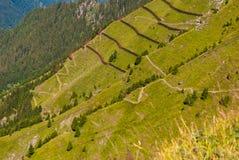 Avalanche barrier in a mountain meadow. Alpine landscape from the top of Mannlichen Jungfrau region, Bern, Switzerland.  stock image